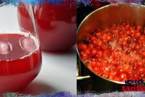 Cranberry Suyu Tarifi