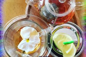 Vücut Direncini Arttıran Ekinezya Çayı