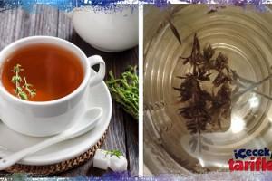 Grip Önleyici Kekik Çayı