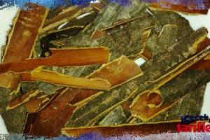 Barut Ağacı Kabuğu Çayı